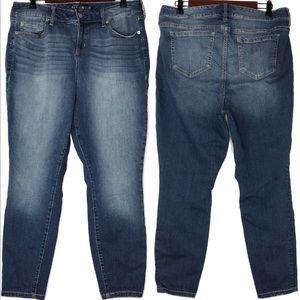 TORRID Premium Hi-Rise Curvy Skinny Jeans